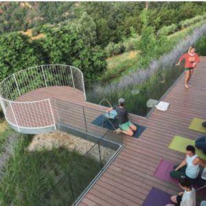 Lezione di yoga sulla terrazza sopra le vigne delle Marche