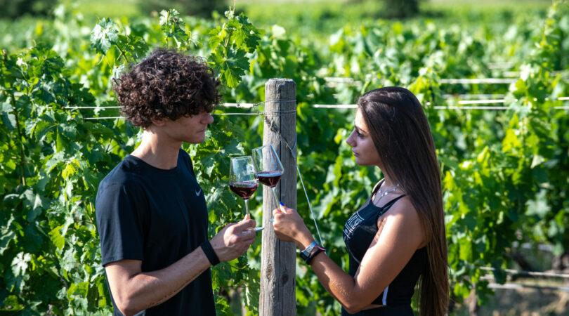 travel app per prenotare degustazioni di vini