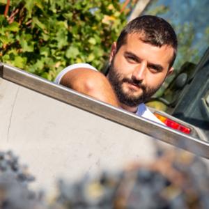 Buy & Taste online: gran selezione di Chianti Classico - Italywow